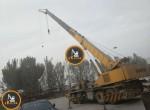 Cranes456